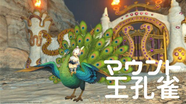 王孔雀マウント買いました→尾羽のファサーが美しく楽しい!